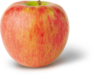 Honey Crisp by NY Apple Country